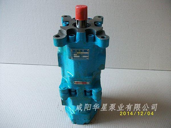 铁壳双联油泵